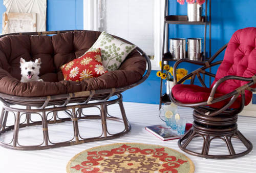 papasan chair looks cute  feng shui by fishgirl, Living room